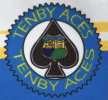 Tenby Aces logo