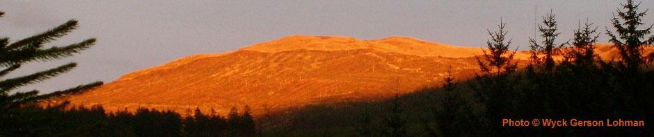sunnyhill.jpg