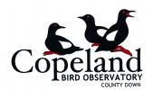 Copeland Bird Observatory logo