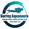 Surrey Aquanauts logo