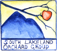 South Lakeland Orchard Group logo